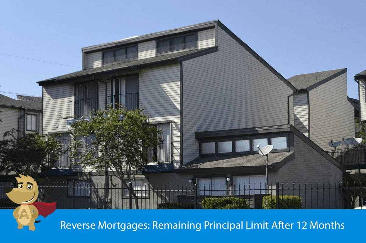 Reverse Mortgages: Remaining Principal Limit After 12 Months