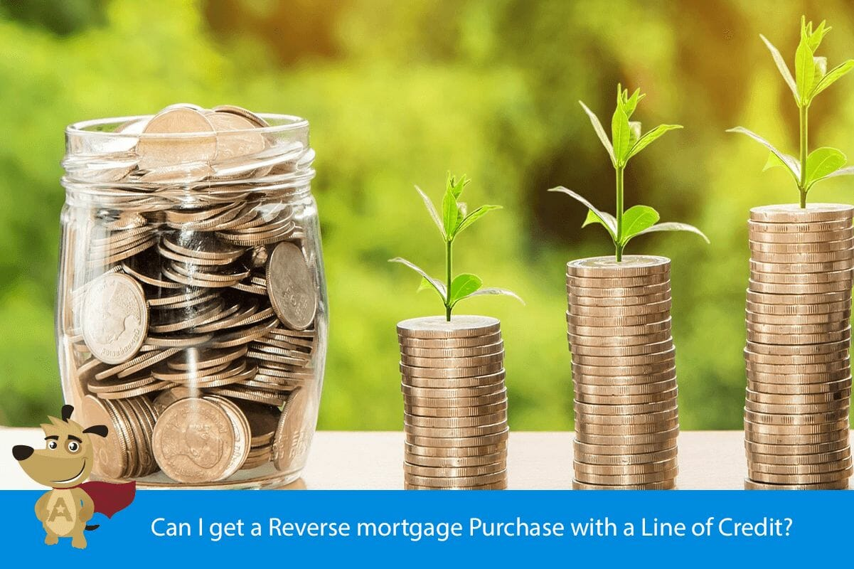 Can I get a Reverse mortgage Purchase with a Line of Credit?