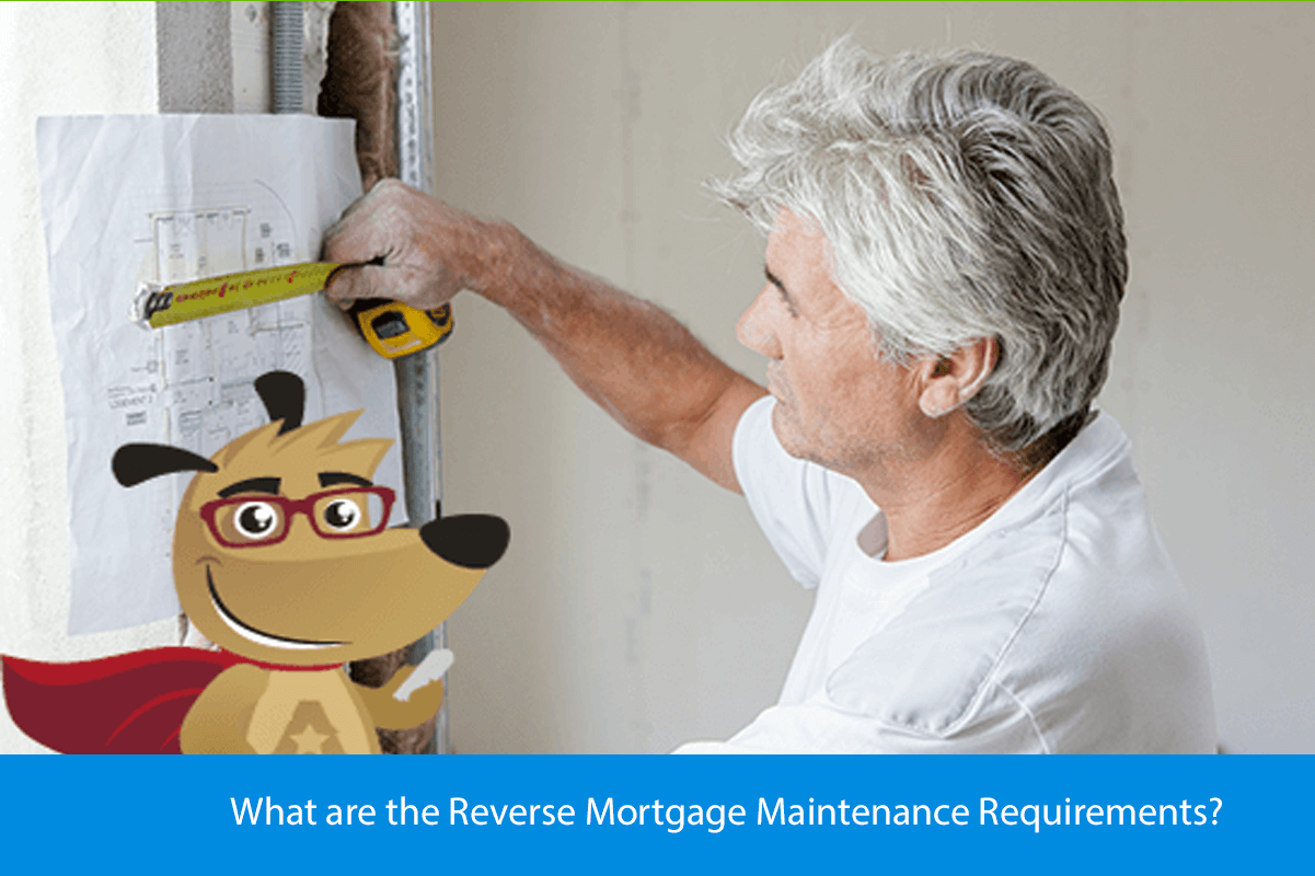 What are the Reverse Mortgage Maintenance Requirements?