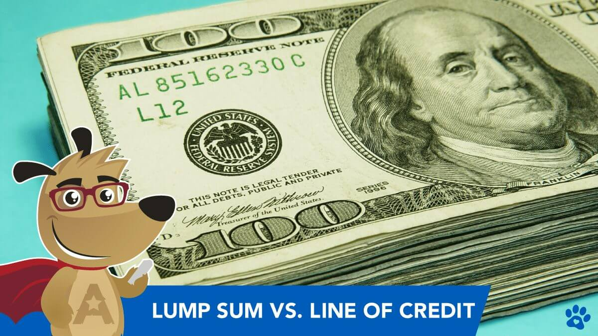 Reverse Mortgage Types: Lump Sum Payout -VS- Line of Credit