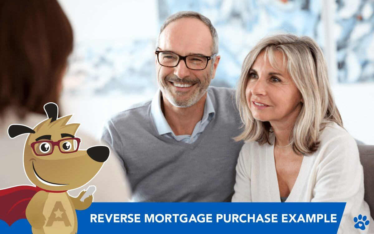 The Ideal Reverse Mortgage Purchase Example