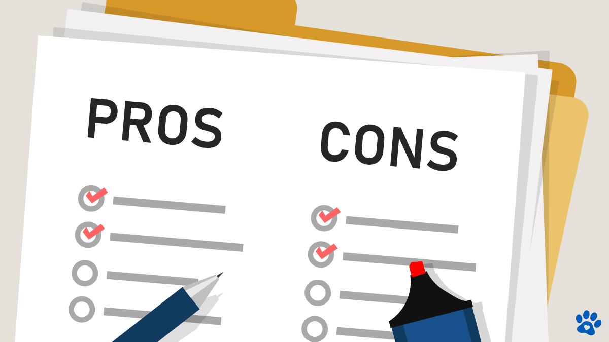Reverse Mortgage Pros and Cons - Top 5 FAQ